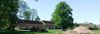 Linde, SICK, Schloss Buchholz, Verschiebung, Waldkirch, Flachwurzler, Baum