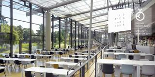 Modernisierung, Umbau, Erweiterung, Glashülle, Klimakonzept, Adidas, Herzogenaurach, Kantine, Campus, Event, Natur, Seeblick, Terrasse